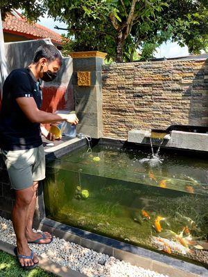 Mengisi waktu luang selama PPKM Darurat, Juli 2021, kiper PS Sleman Ega Rizky memelihara ikan koi di rumahnya.
