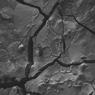 Ahli Temukan Sel Otak Berumur 2000 Tahun dari Korban Letusan Vesuvius