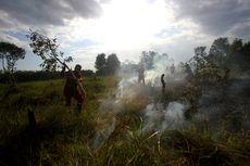 Polisi Tetapkan 130 Orang dan 2 Perusahaan Jadi Tersangka Karhutla