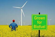 Biofuel, Bahan Bakar Ramah Lingkungan Mulai Dipakai Kawasan ASEAN