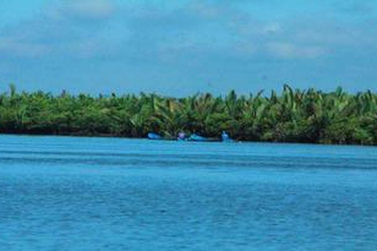 Perahu warga melintas di hamparan hutan mangrove yang sudah mulai rusak di kawasan laguna Segara Anakan, Kabupaten Cilacap, Jawa Tengah, Rabu (17/4/2013). Kerusakan terlihat dari dominasi vegetasi pohon nipah (Nypa fruticans) yang mendesak ekosistem mangrove yang tersisa. Kerusakan dipicu perubahan lingkungan dari payau menjadi daratan akibat sedimentasi. Kerusakan hutan mangrove di kawasan Laguna Segara Anakan semakin meluas. Jika pada 2011, dari 8.495 hektar mangrove yang tersisa, sekitar 4.000 hektar di antaranya rusak, kini areal kerusakannya meluas menjadi 6.000 hektar.