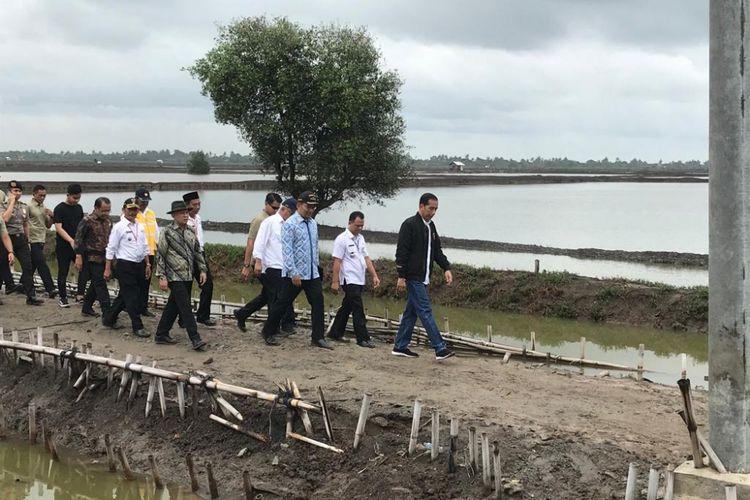 Presiden Joko Widodo saat menghadiri panen raya udang di tambak Pantai Mekar, Kecamatan Muara Gembong, Kabupaten Bekasi, Jawa Barat, Rabu (30/1/2019).