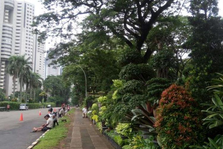 Lokasi relokasi lapak pedagang tanaman hias di Senayan. Mereka dipindahkan di Parkir Timur Senayan.