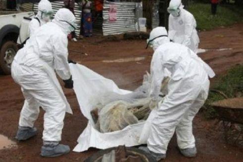 Ebola Mewabah, Afrika Barat Terancam Krisis Pangan