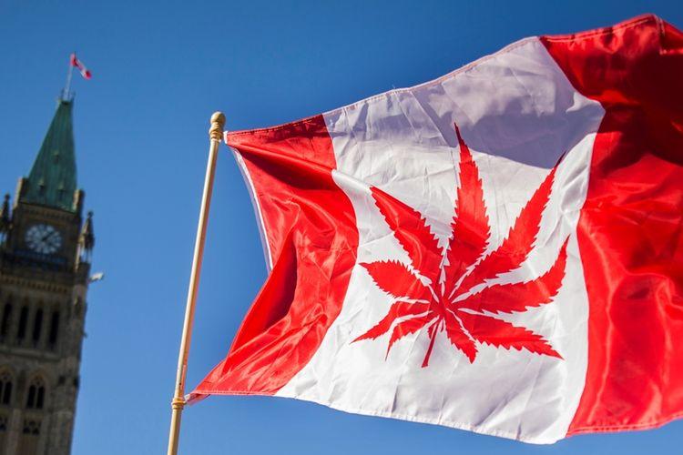 Pemerintah Kanada telah melegalkan penjualan dan penggunaan ganja untuk tujuan rekreasional pada Rabu (17/10/2018).
