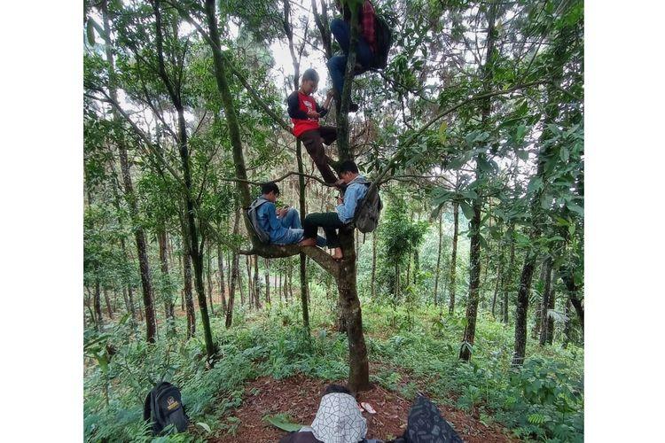 Siswa MTs Pakis, Dusun Pesawahan, Desa Gununglurah, Kecamatan Cilongok, Banyumas, Jawa Tengah mencari sinyal provider di hutan, Senin (1/12/2020)