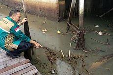 Sungai Martapura di Kalimantan Selatan Tercemar Oli