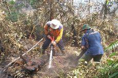 2 Hektar Lahan di Pekanbaru Terbakar, Dalamnya Gambut Menjadi Kesulitan Petugas Padamkan Api