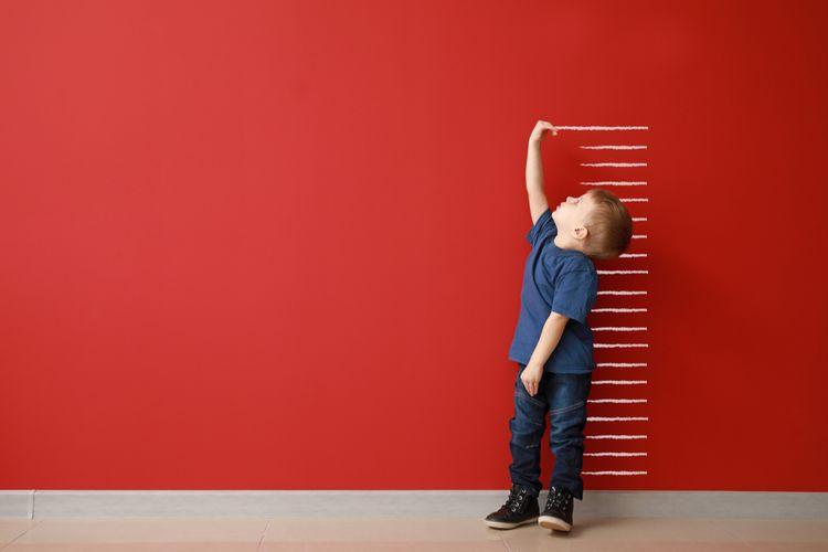 Ilustrasi pengukuran pertumbuhan tinggi badan anak. Pengukuran sebagai bagian dari pengamatan.