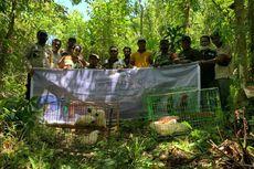 Puluhan Satwa Dilepasliarkan di Hutan Pulau Seram