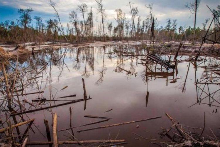 Kerusakan hutan rawa akibat tambang emas tradisional di Kereng pangi, Kalimantan Tengah, 24 Agustus 2013. Sebanyak 140 negara menandatangani traktat PBB untuk menangani polusi merkuri serta penggunaan produk metal berbahaya.