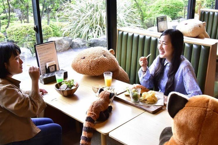 Kebun Binatang Izu Shaboten menggunakan boneka capybara untuk terapkan physical distancing