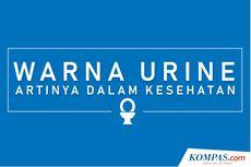 INFOGRAFIK: Warna Urine dan Artinya Bagi Kesehatan Tubuh
