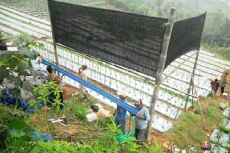 Tim PKM UGM bersama Petani dusun Ngoho, desa Kemitir, kecamatan Sumowono, kabupaten   Semarang memasang alat pemanen kabut, Minggu (20/4/2014) pagi. adopsi teknologi pemamnen kabut   diharapkan menjadi solusi kekeringan diwilayah dataran tinggi tersebut
