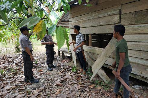 Gajah Liar Merusak 8 Gubuk Petani di Aceh Timur