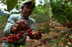 BUMDes Dongkrak Produk Unggulan Desa Terpencil