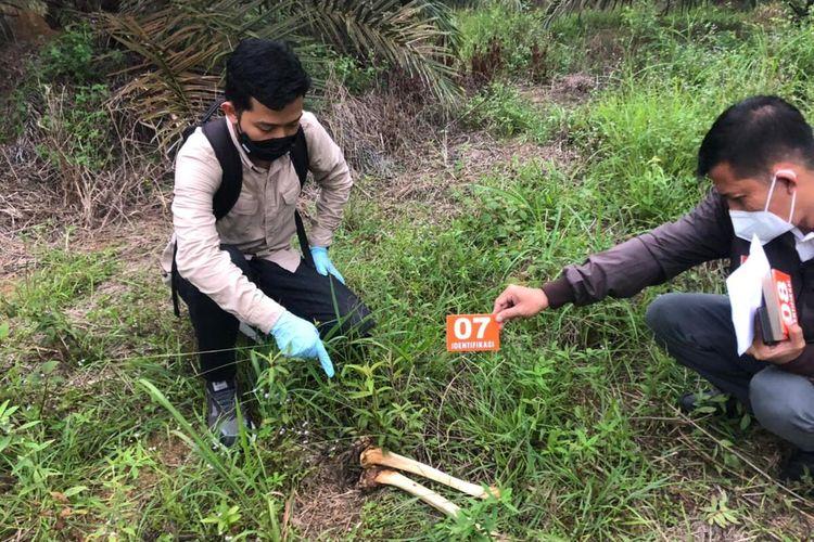 Petugas kepolisian melakukan olah TKP pada temuan tulang belulang manusia di kebun sawit di Desa Sidomulyo, Kecamatan Lirik, Kabupaten Inhu, Riau, Selasa (6/7/2021) sore.