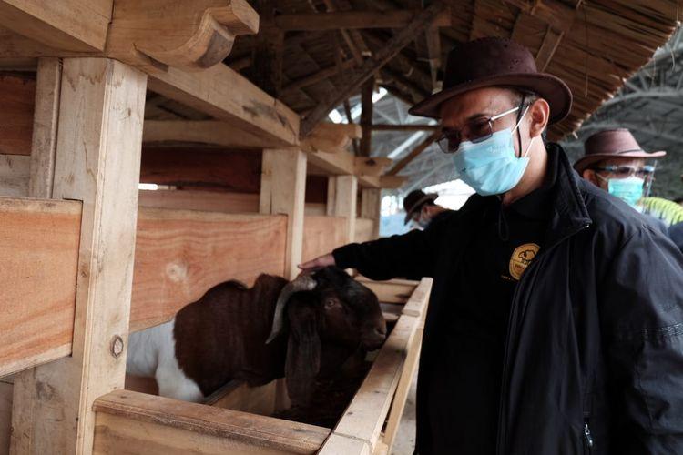 Jajaran manajemen Yayasan Dompet Dhuafa dan perwakilan 12 pimpinan cabang Dompet Dhuafa yang menjadi pilot project DD Farm, menghadiri simbolisasi peluncuran program tersebut di DD Farm Banten, beberapa waktu lalu.