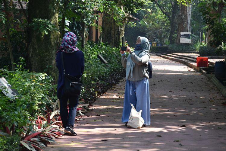 Pengunjung tengah menikmati suasana pepohonan dan satwa di kebun binatang bandung atau Baandung Zoological Garden (Bazooga), Jalan Taman Sari, Kota Bandung, Sabtu (27/6/2020).