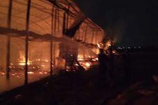 Kandang Peternakan di Grobogan Terbakar, 20.000 Ayam Mati