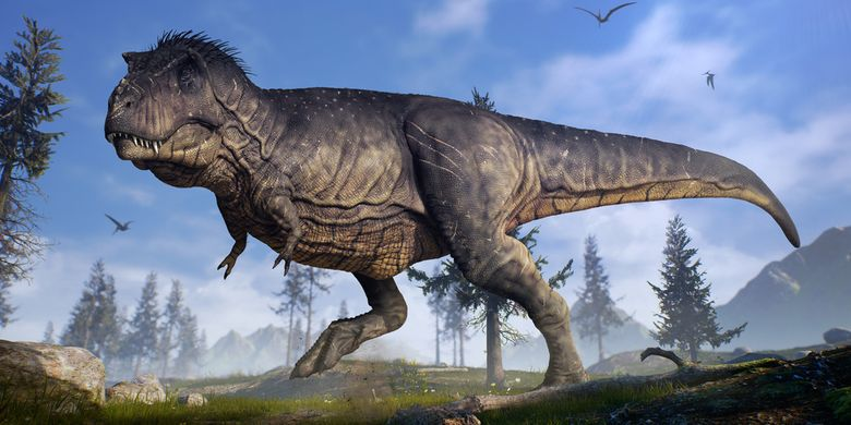Ilustrasi Tyrannosaurus rex (T.rex), dinosaurus karnivora besar yang pernah hidup di Bumi.