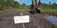 Tingkatkan Produksi Pertanian, Kementan Optimalkan Lahan Rawa di 14 Provinsi