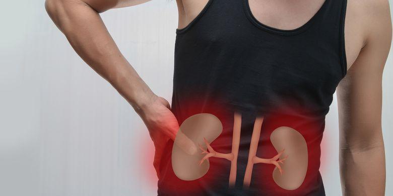 ilustrasi penyakit ginjal