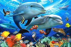 Mungkinkah Ikan Laut Habis?