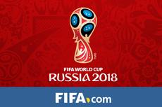 Skotlandia Gagal ke Piala Dunia, Pelatih Keluhkan Postur Pemain