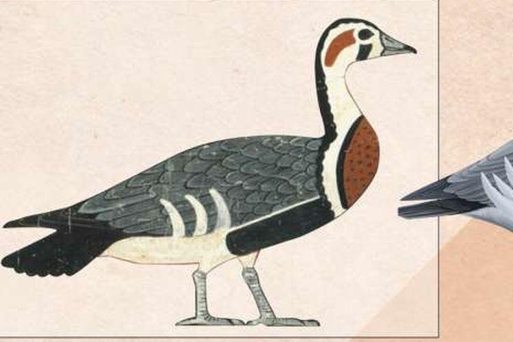 Lukisan Meidum Geese mengungkap spesies angsa yang telah punah.