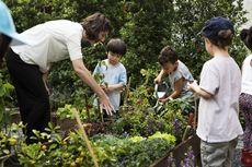 Jelaskan Apa yang Bisa Kamu Contoh dari Film Pendek Kebun Sekolahku!