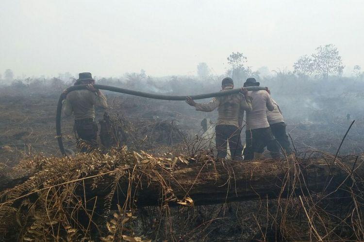 Petugas kepolisian melakukan pemadaman api pada sebuah lahan yang terbakar di Riau. Kompas.com/dok. Polda Riau