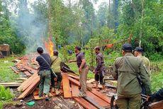 Tim BBKSDA Riau Bakar 9 Pondok Pembalak Liar di Kawasan Hutan Lindung