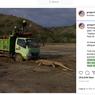 Setelah Viral Foto Komodo Hadang Truk, Jalur Pembangunan