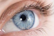 Soal Donor Kornea Mata Habibie, Apakah Bisa Mata Manusia Didonorkan? Berikut Penjelasannya..
