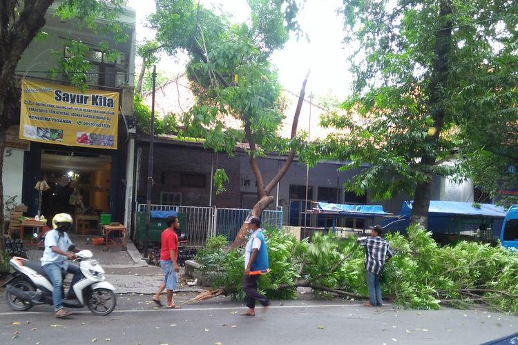 Pohon tumbang di Jalan Basuki Rahmad, Gresik, Kamis (5/11/2020) siang.
