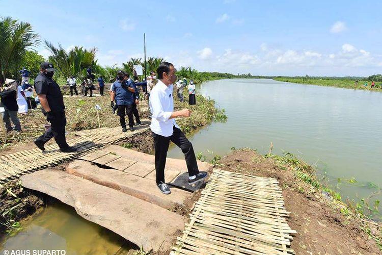 Presiden Joko Widodo meninjau lokasi penanaman mangrove di Kecamatan Cilacap Utara, Kabupaten Cilacap, Jawa Tengah, Kamis (23/9/2021). Jokowi berharap keberadaan mangrove dapat memperbaiki habitat di daerah pantai sehingga dapat berdampak kepada peningkatan produksi ikan dan produksi hasil laut lainnya.