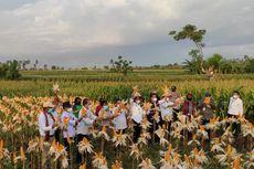 Mentan: Kabupaten dan Kota di Indonesia Harus Bisa Ekspor, Itu Perintah Presiden