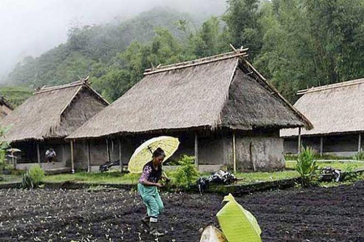 Petani di Desa Sembalun, Kabupaten Lombok Timur, Nusa Tenggara Barat.