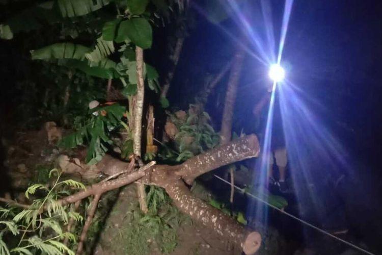 Pengendarasepeda ontel tewas tertimpa pohon tumbang di pinggir jalan di wilayah Desa Temon, Kecamatan Brati, Kabupaten Grobogan, Jawa Tengah, Selasa (1/11/2020) malam.
