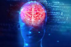 4 Suplemen Terbaik untuk Jaga Kesehatan Otak