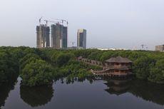 5 Wisata Hutan Mangrove di Indonesia, Mana yang Favorit?