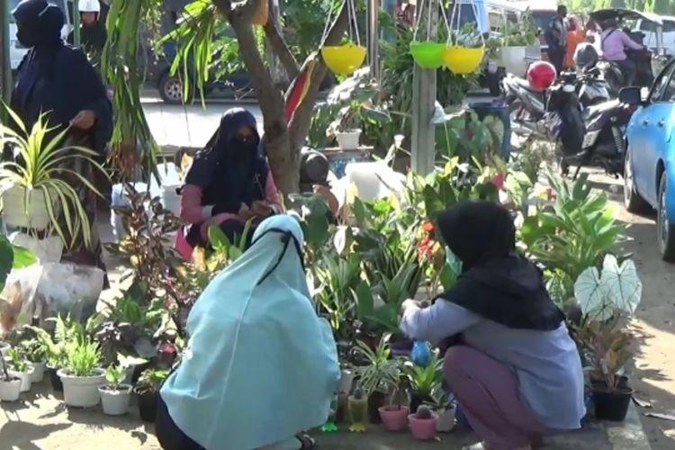 Penjual tanaman hias di pinggir jalan utama Polewali Mandar, Sulawesi Barat, Jumat (30/10/2020).