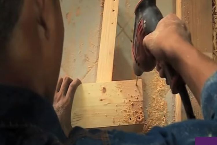 Bisnis kayu jati belanda