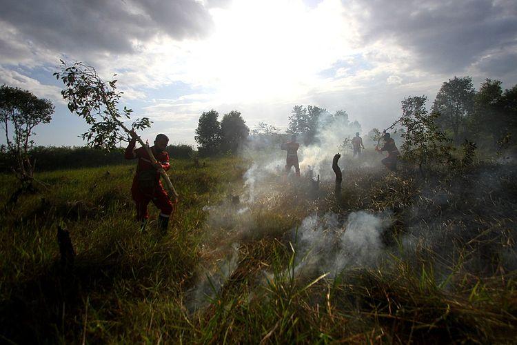 Petugas Dinas Kehutanan Provinsi Kalsel berusaha memadamkan kebakaran lahan gambut di Kawasan Liang Anggang, Banjarbaru, Kalimantan Selatan, Kamis (27/8/2020). Petugas gabungan yang terdiri dari Dinas Kehutanan, Manggala Agni, serta dua helikopter milik Badan Nasional Penanggulangan Bencana (BNPB) dikerahkan untuk memadamkan kebakaran lahan gambut tersebut. ANTARA FOTO/Bayu Pratama S/aww.