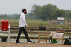 Jokowi Urges Vigilance as Covid-19 Poses Threat to Food Crisis