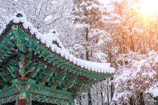 Beragam Alasan Bagi Wisatawan Indonesia untuk Berlibur Akhir Tahun di Korea Selatan