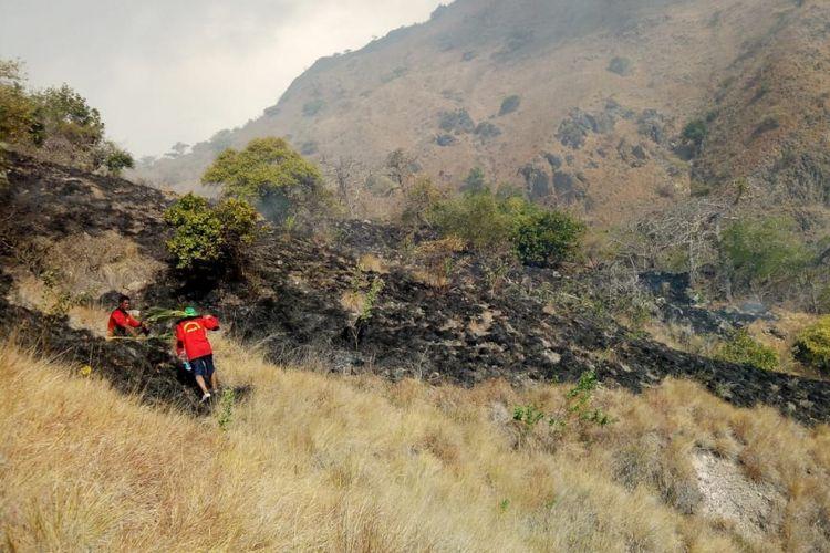 Lokasi 10 hektar padang rumput di seputaran Pulau Komodo, Nusa Tenggara Timur (NTT), yang terbakar.