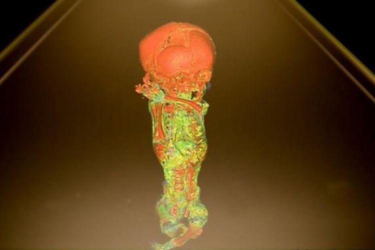 Mumi dilihat menggunakan hologram