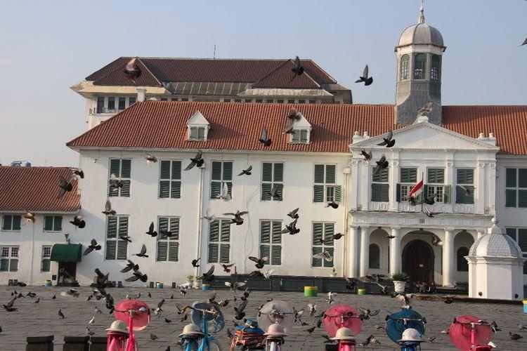 Burung-burung merpati sedang berterbangan di salah satu tempat di Kawasan Kota Tua Jakarta